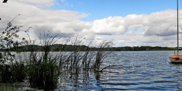 Der Köthener See. Foto: Günter Mehlitz