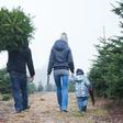 """Virologe zum Teil-Lockdown: """"Ich denke nicht, dass wir entspannt Weihnachten feiern können"""""""