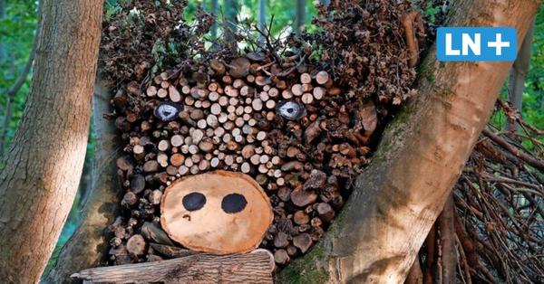Ostholstein: Kunst aus Holz im Wald von Gut Hasselburg
