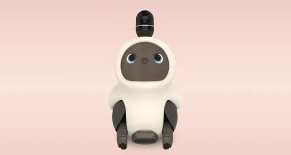 ... der Roboter gegen Einsamkeit in der Corona-Pandemie, der nur eins will: Kuscheln