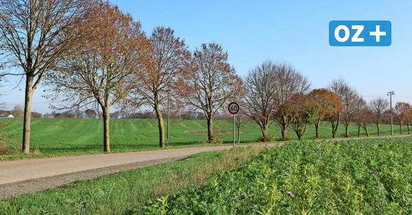 Kröpeliner planen Eigenheime vor Brusow: So sieht der Bebauungsplan aus