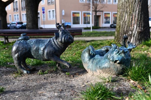 Das einzige Waldmopspärchen tummelt sich am Parkplatz vor dem Paulikloster. Foto: Rüdiger Böhme