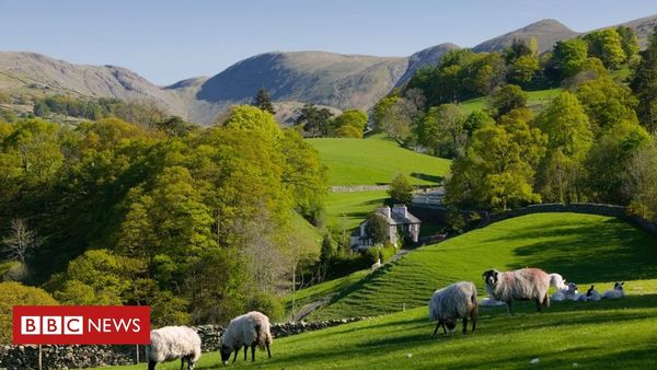 Fibre broadband: The cost of delivering in rural areas