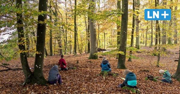 Corona-Pandemie: Montessorischule Gudow tauscht Klassenzimmer gegen Wald