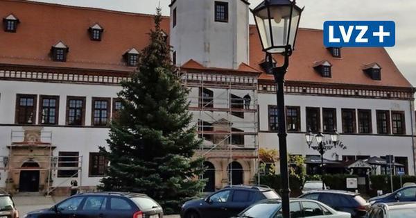 Wie Pegaus Weihnachtsbaum diesmal zum Markt gekommen ist