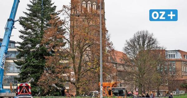 """Rostocks Weihnachtsbaum aufgestellt: Wie weihnachtlich wird die """"Kröpi"""" trotz Corona?"""