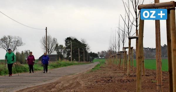 Stadt sorgt für frisches Grün in und um Wolgast