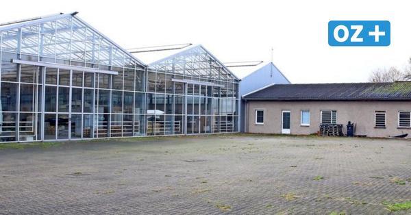 Barth: Nordflor verabschiedet sich aus der Vinetastadt