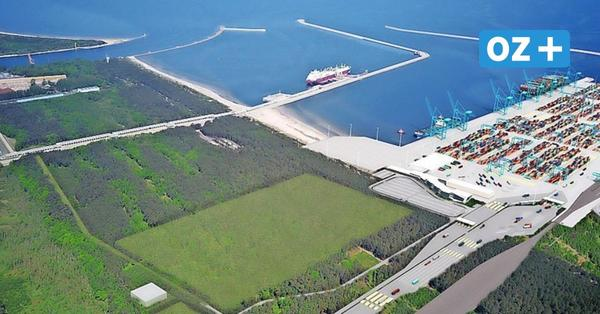 Usedomer in Sorge: Protest gegen polnischen Containerhafen im Naturschutzgebiet