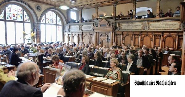 So könnte der Kantonsrat reformiert werden