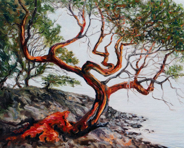 Terrill Welch   Arbutus Tree in the fog St. John Point (2018)   Available for Sale   Artsy