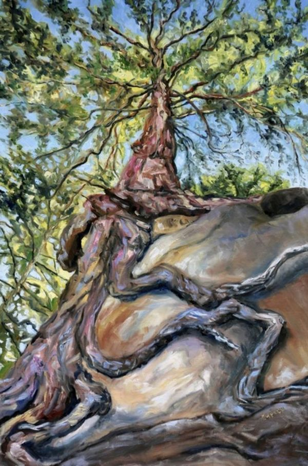 Terrill Welch   Standing below the old fir at Tribune Bay (2019)   Available for Sale   Artsy