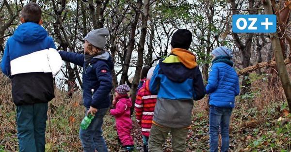 Auf Schatzsuche in den Wäldern rund um Rostock: So funktioniert der Spaß für die ganze Familie