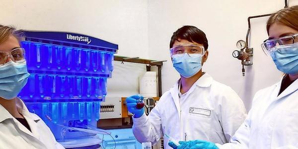 Universität Göttingen: Forscher entwickeln Strategie zur passgenauen Medikamentenherstellung