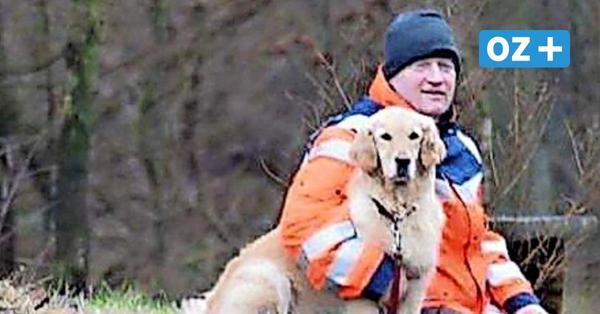 Wismar: Mann rettet Hund und Herrchen aus kaltem Hafenbecken