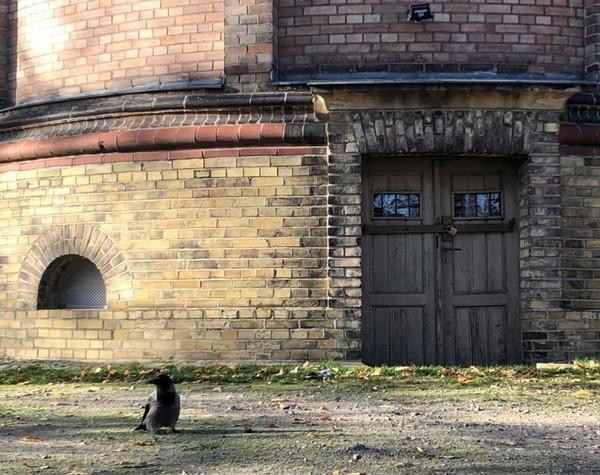 Wir wollten wissen, wo in Potsdam das ist. Foto: Peter Degener