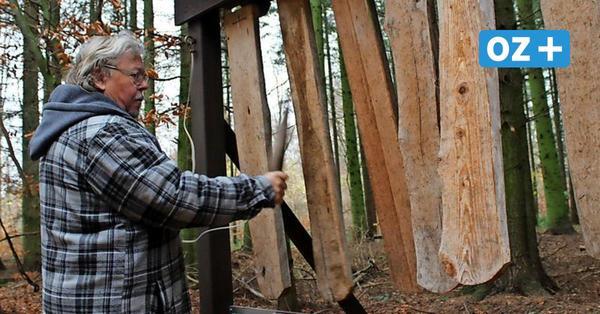 Erlebnispfad in Buddenhagen:So klingt der Wald im Morsetakt