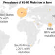 Early Coronavirus Mutation Made It Harder to Stop, Evidence Suggests