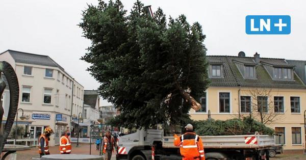 Marktplatz Bad Segeberg: Ein Weihnachtsbaum schwebt ein