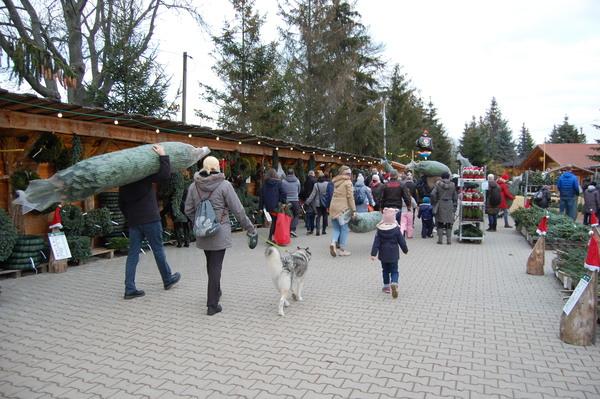Am Samstag auf dem Werderaner Tannenhof. Foto: Annika Jensen
