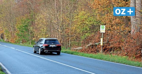 """Pläne für Rennbahn Bad Doberan: """"Ich finde eine Haltestelle dort schwierig"""""""