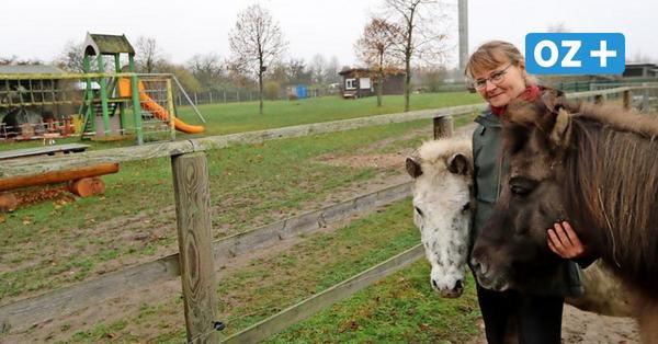 Ribnitz: Beliebter Streichelzoo braucht einen neuen Spielplatz – OZ sammelt Spenden