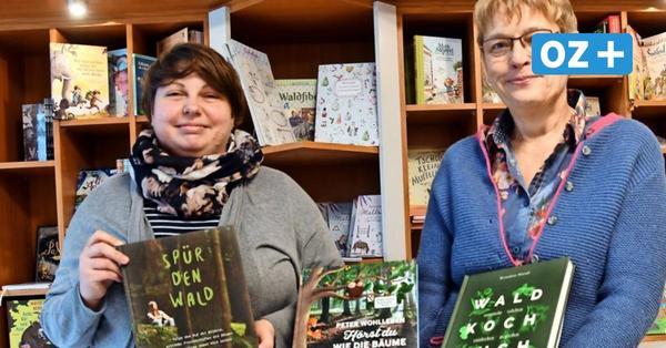 Bergen auf Rügen: Einzelhändler bieten dezentralen Weihnachtsmarkt