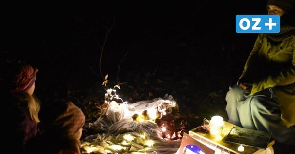 Der Tipp fürs Wochenende: Nachtwanderung durch den Everstorfer Forst bei Grevesmühlen