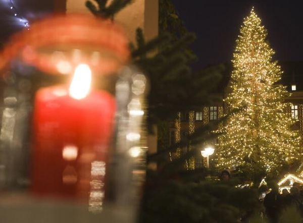 So schön wird's dieses Jahr wieder an der Marktkirche. Foto: Nancy Heusel.