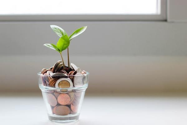 The high cost of cultivating potential in our kids