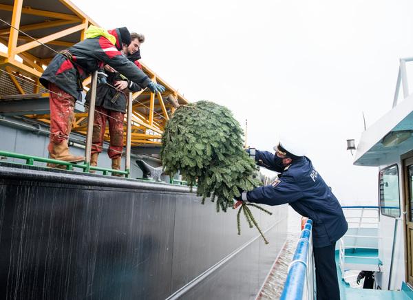 Weihnachtsbaum an Bord! Eine schöne Geste für die Seeleute. Foto: dpa