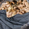 Are Weighted Blankets Giving People Extra-Vivid Sex Dreams?