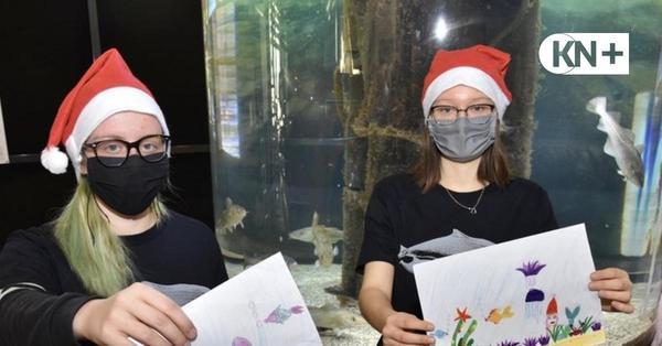 Wettbewerb Ostsee-Info-Center: Wer malt die schönste Unterwasserwelt?