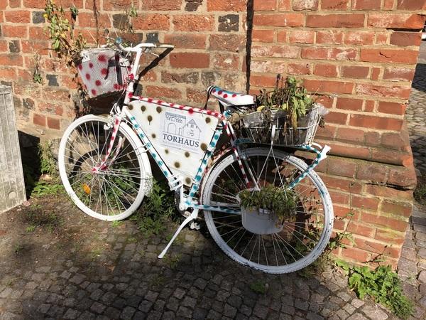 Das Fahrrad steht am Torhaus in Bad Doberan. (Foto: Cora Meyer)