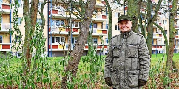 Eigeninitiative in Stralsund: Mieter greifen selbst zum Pflanzspaten