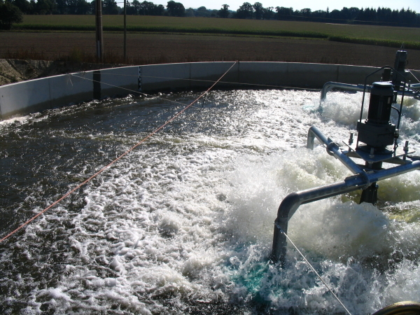 Micropolluants en sortie de station d'épuration: quels impacts sur la santé humaine et les milieux aquatiques ?