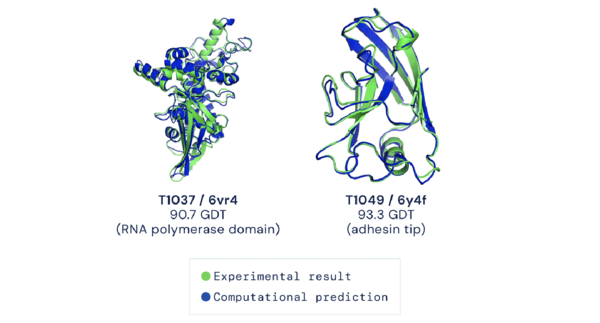 AlphaFold's predictions vs. the experimentally-determined shapes of two CASP14 proteins.
