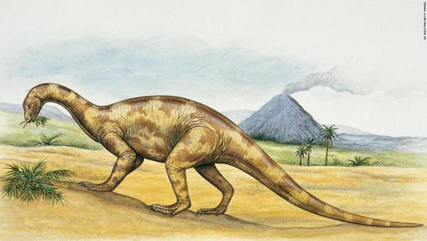 Scientists digitally rebuilt this dinosaur's brain and made some surprising discoveries