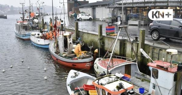 Eckernförde - Mann stürzt am Hafen ins Wasser - Helfer können ihn retten