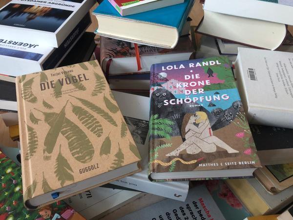 Bücher, die Zuversicht geben. Foto: Sarah Kugler