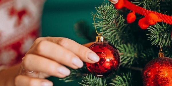Wir suchen die schönsten Weihnachtsbäume der Region