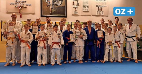 Spendenaktion: Wolgaster Judokas wünschen sich Medizinbälle und Kletterstangen