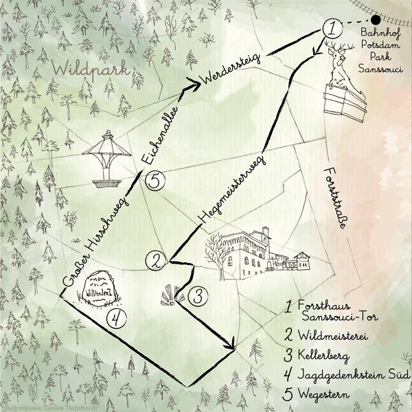 Ein besonderer Weg durch den Wildpark. Grafik: Gesine Thränhardt