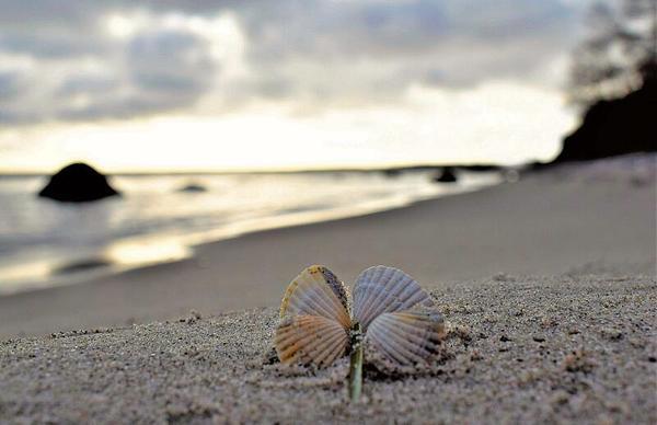 Wenn das Glück in den kleinen Dingen liegt (Foto: Corinna Schaak)