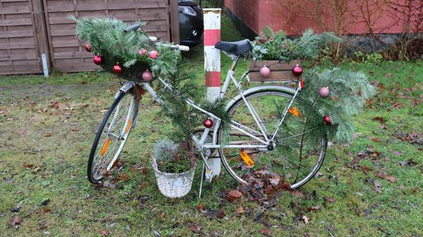Das Fahrrad steht in Reddelich (Foto: Anja Levien)