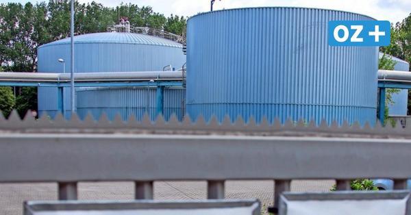 Debatte um Klärschlamm-Verbrennung: Das zahlen die Rostocker schon jetzt