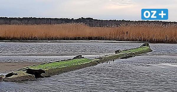 Reste aus dem Zweiten Weltkrieg? Ebbe an der Ostsee sorgt für Rätsel vor Usedom
