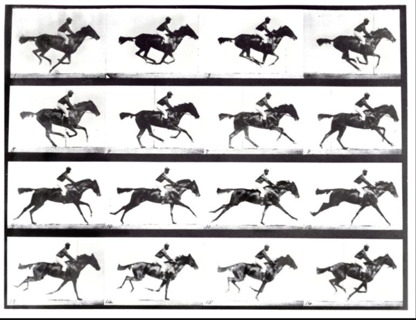 Eadweard Muybridge, The Horse in Motion (1878) is perhaps one the best examples of true documentary photography. In part because it is a series of photos of the exact same image presented as a single image. He is known as the Godfather of Motion Pictures.