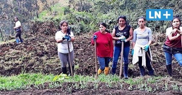 Rotarierin aus Stockelsdorf kämpft für misshandelte Frauen in Ecuador