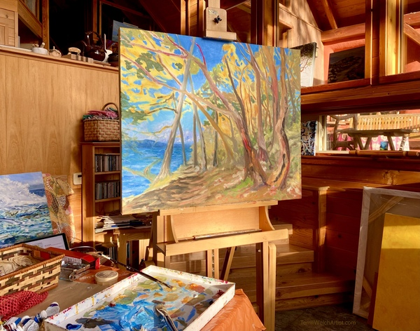 Winter Home Studio Space of Terrill Welch